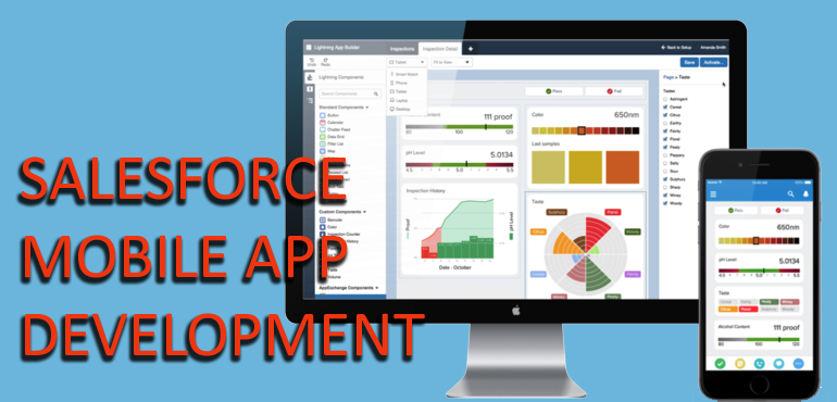 SalesForce Mobile App Development